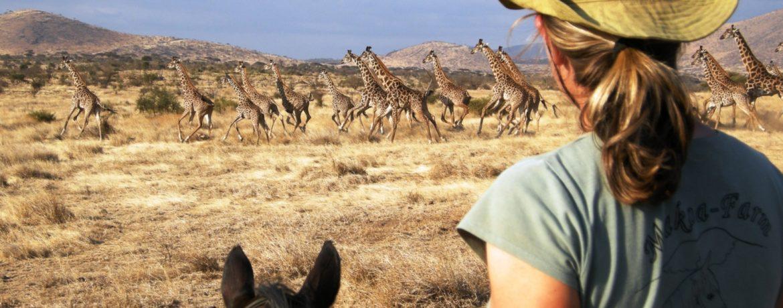 safari à cheval en tanzanie