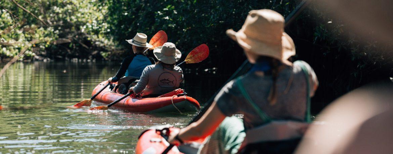 Kayaking in Coiba National Park